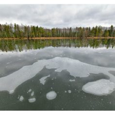 Национальный парк «Смоленское Поозерье» закрылся для гостей