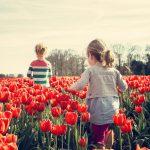 В «Единой России» проведут мониторинг организации летнего отдыха детей