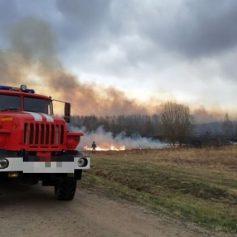 Травяной пал захватил два гектара в Шумячском районе