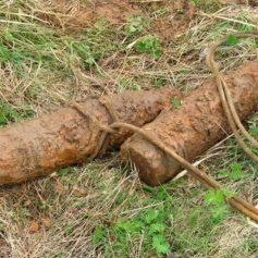 В Смоленске на даче обнаружили боеприпасы времён войны