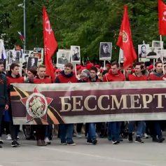 Шествие «Бессмертного полка» в Смоленске откладывается на неопределенный срок