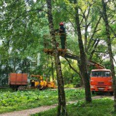 Зеленую зону на улице Николаева в Смоленске начали благоустраивать