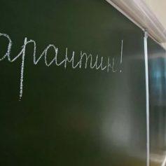 В 9 школах Смоленской области выявили зараженных COVID-19
