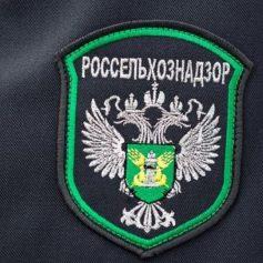 В Смоленской области выявили очередное предприятие-фантом