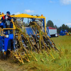 Смоленщине выделили 13,7 млн рублей на проект поддержки сельского хозяйства