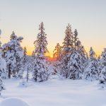 19 января в Смоленске сохранится морозная погода