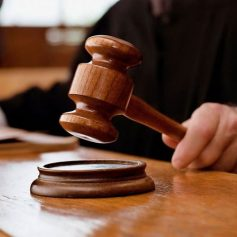 В Смоленском районе суд закрыл питомник собак
