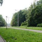 В Смоленске обсудят концепцию развития Реадовского парка