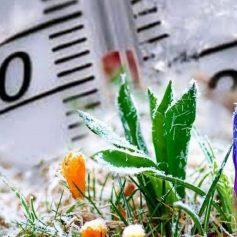 В Смоленской области ожидаются заморозки и мокрый снег