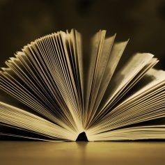 Смолянка вошла в шорт-лист литературной премии за лучший перевод