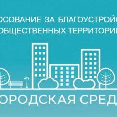 Елена Паламарчук: «Обновление внешнего облика даст возможность Смоленску быть уютным для каждого жителя»