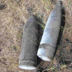 Под Смоленском сапёры разминировали две деревни