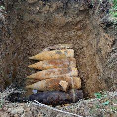 Под Смоленском обнаружен крупный схрон боеприпасов