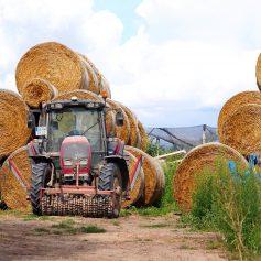 Разработку современной аграрной политики предложили включить в народную программу «Единой России»