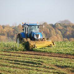 Смоленские аграрии могут получить субсидии на межевание и кадастровые работы