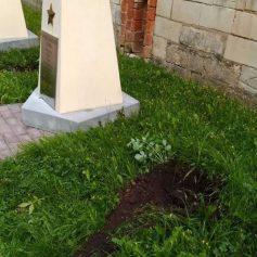 Из сквера Памяти Героев в Смоленске украли две туи