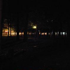 В Смоленске хулиганы спровоцировали отключение света в парке Блонье